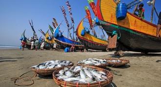 Fishing Boat at Cox's Bazar, Bangladesh.