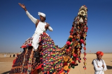A decorated camel at camel decoration competition during desert festival. Jaisalmer, India. The desert festival in Jaisalmer was started to attract foreign tourists, who always wanted to explore as many facets of Rajasthan as they could in the possible crunch of time. The three-day event stresses more on local elements and heritage. Desert Festival of Jaisalmer is a colorful festival held in February every year. You will get to see Cultural events, camel races, turban tying competitions etc. Not exciting enough! Attend the contests to judge the man with the best moustache. Everything is exotic in the Desert festival, amidst the golden sands of the Thar Desert. With a final musical performance by folk singers under the moonlit sky at the dunes in Sam, just outside Jaisalmer, the festival comes to its end. The rich culture of the region is on display during this three daylong extravaganza. Jaisalmer, India