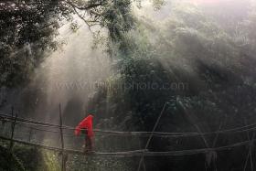 A villager crosses a bamboo bridge