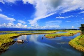 Landscape at Sylhet