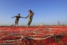 Running on fishing net