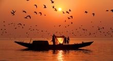 Fishing of Bay of Bengal