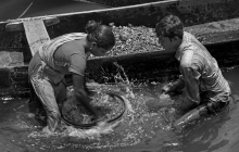 The stone labors