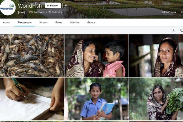 worldfish-flickr